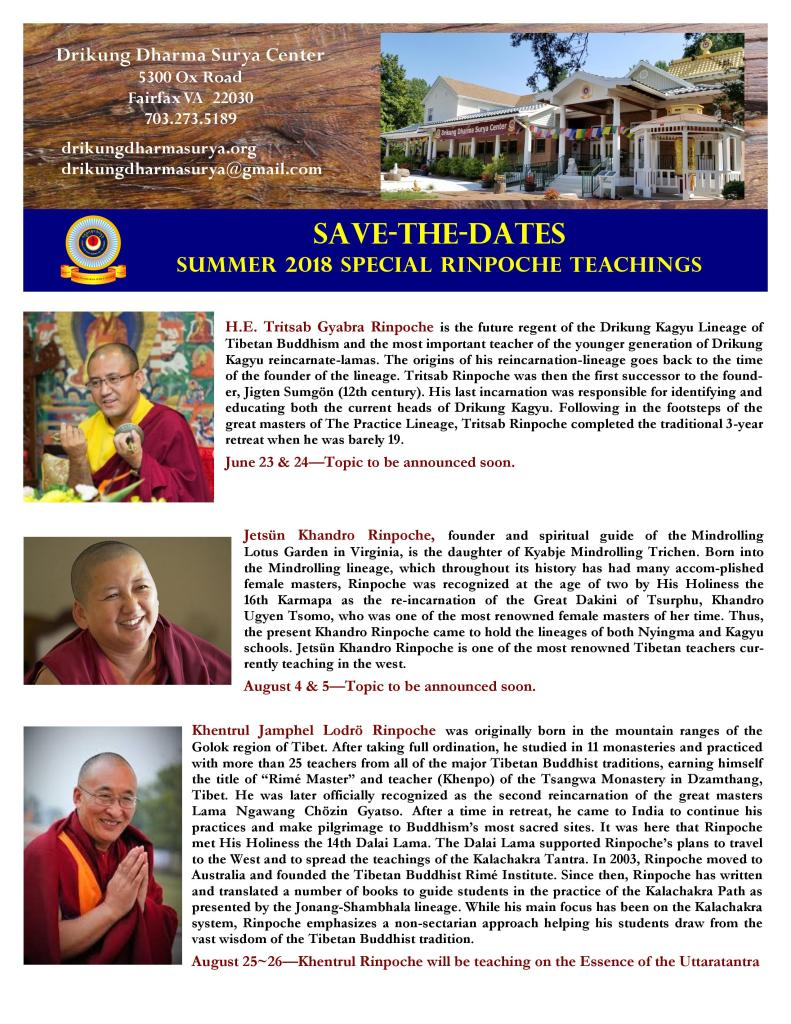 DDSC Summer 2018  Special Rinpoche Teachings-page-001
